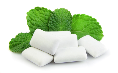 Fresh mint leaves with several pieces of white gum